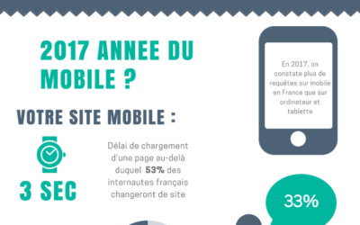 | INFOGRAPHIE | Le E-Commerce en France en 2017